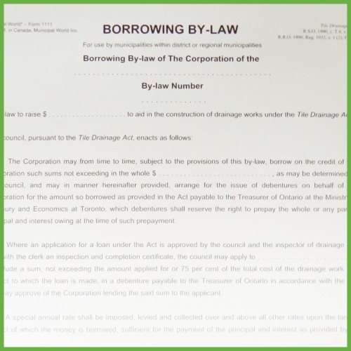Borrowing By-Law - Form 2