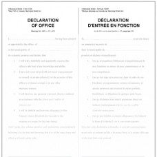Item 1304 - Declaration of elected office - municipal