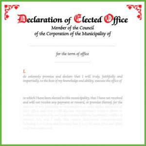 Item 0812 - Declaration of office - individual member council
