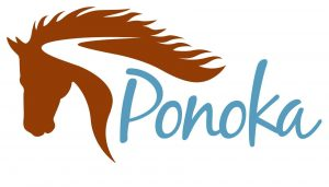 New hardship grant for Ponoka businesses impacted by COVID-19
